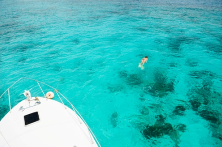 St Thomas Virgin Islands Snorkeling | www.pixshark.com ...